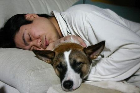 Do slumber down anti snore pillows work